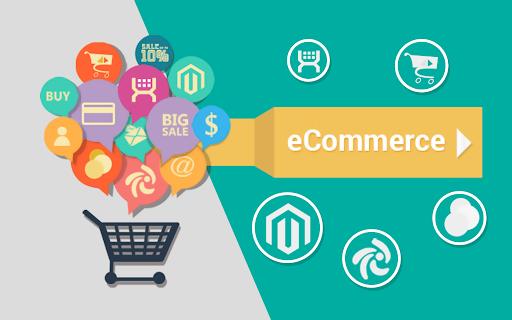 Consultant Seo et E-commerce